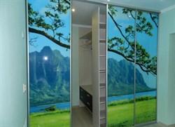 Двери-купе для шкафа-купе с фото печатью на заказ - фото 4773