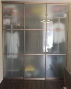Двери-купе для шкафа-купе на заказ - фото 4882