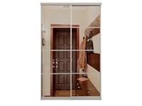 Зеркальные двери-купе для шкафа-купе Дк 3