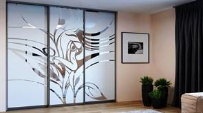 Двери-купе для шкафа-купе художественные пескоструйные рисунком